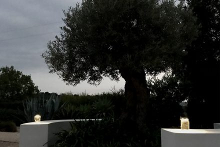 Consol Solar Jar garden