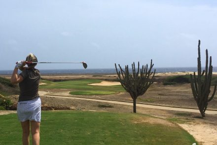 Tierra del sol golf course links aruba