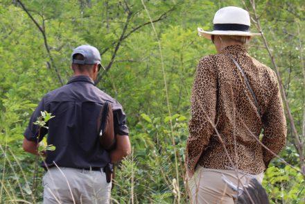 Marataba Safari Lodge game drive