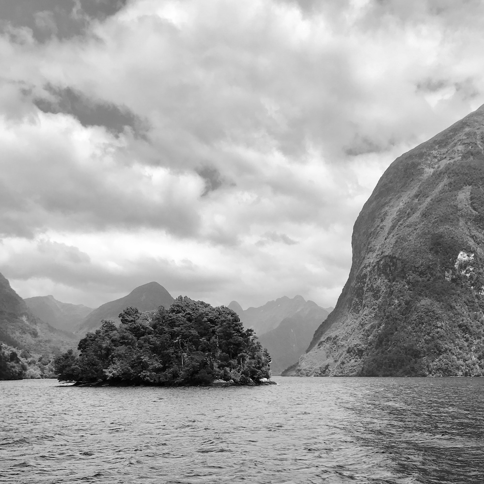 new zealand fiords
