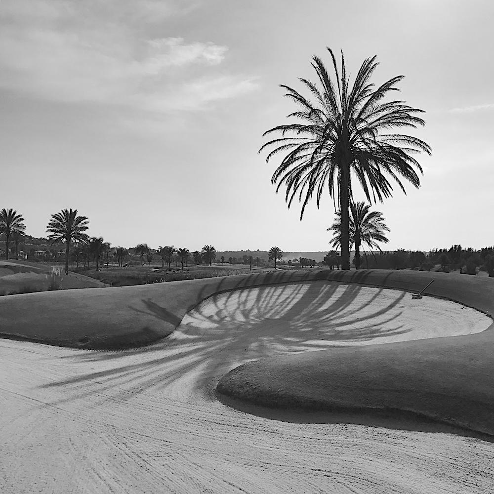 Algarve golf Amendoeira bunker palm
